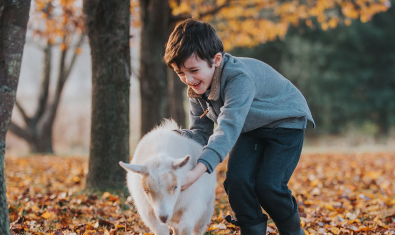 Switching Your Kids To Goat Milk? Here's What You Need To Know Hero Image