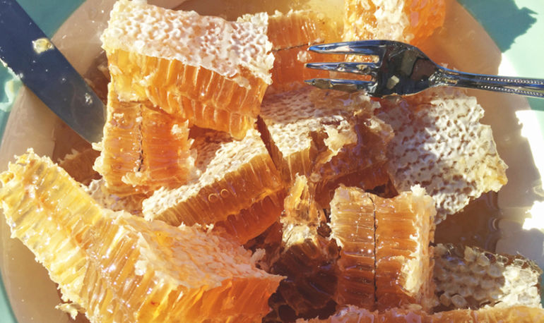 Two Simple Ways Honey Can Make Your Skin Glow Hero Image