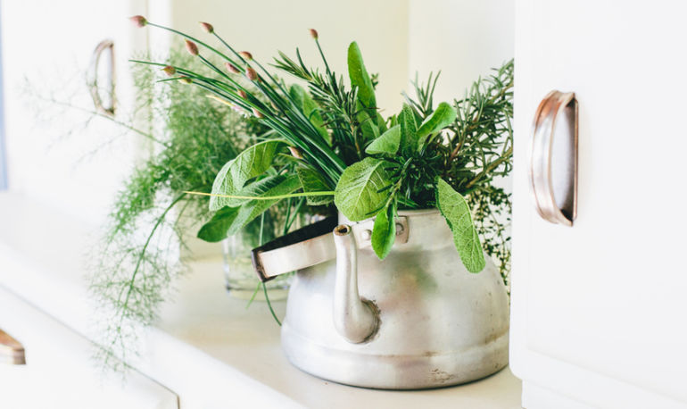 How These 5 Easy-To-Grow Plants Can Ease Brain Fog Hero Image