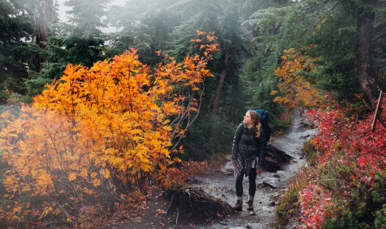Everything You Need To Know To Have The Best Fall Hike Ever Hero Image