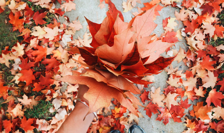 Foliage Guide 2017: Everything You Need To Know For An Epic Fall Outdoors Hero Image