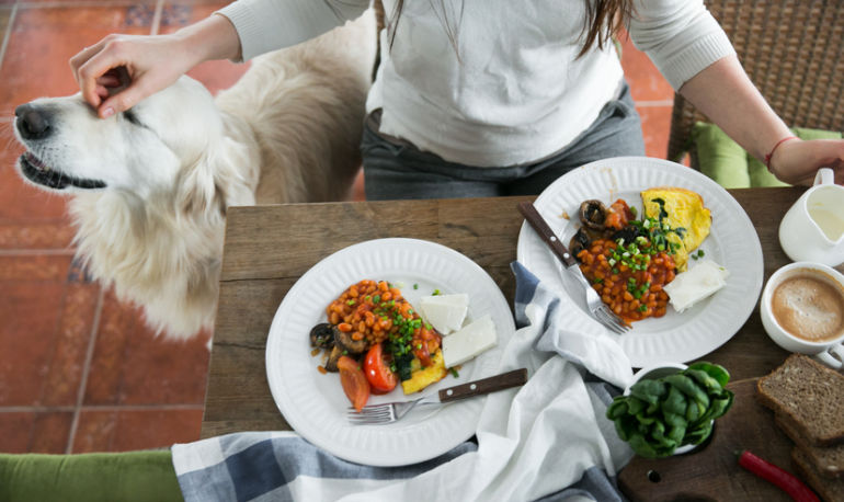 Bond With Your Dog By Making This Nutritious Make-At-Home Pup Paella Hero Image