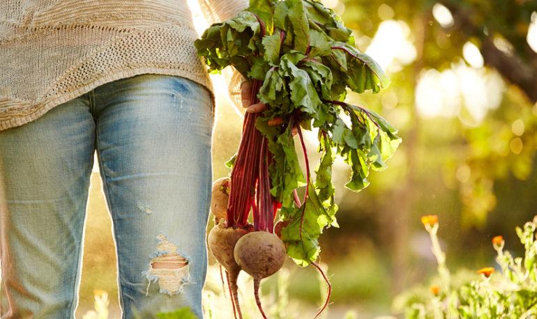 What My Backyard Garden Taught Me About Manifesting Abundance Hero Image