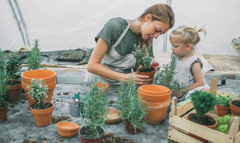 5 Tips I Use To Balance Wellness As A Working Mom Hero Image