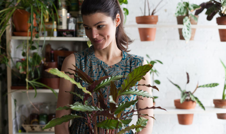 Why I Filled My NYC Apartment With 500 Houseplants Hero Image