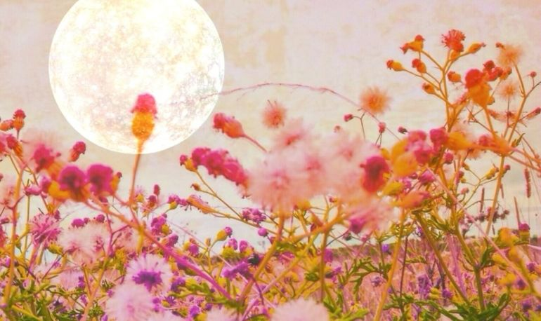 This Personalized New Moon Ritual Will Help You Manifest Your Heart's Desire Hero Image