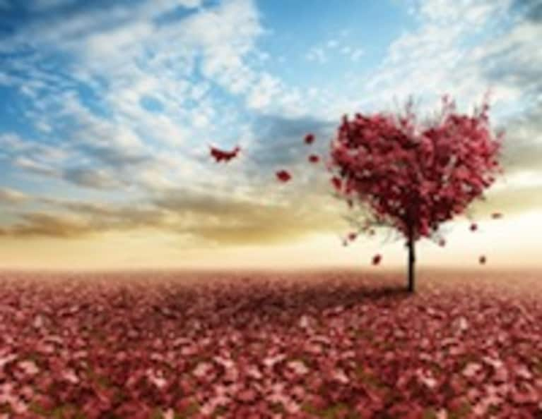 The True Meaning Of Love From A Buddhist Perspective