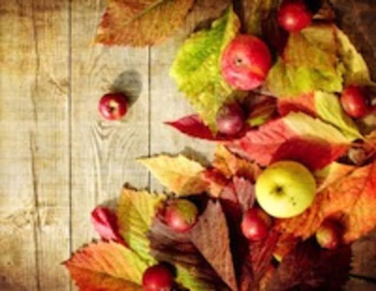 6 Thanksgiving Recipes for Gratitude