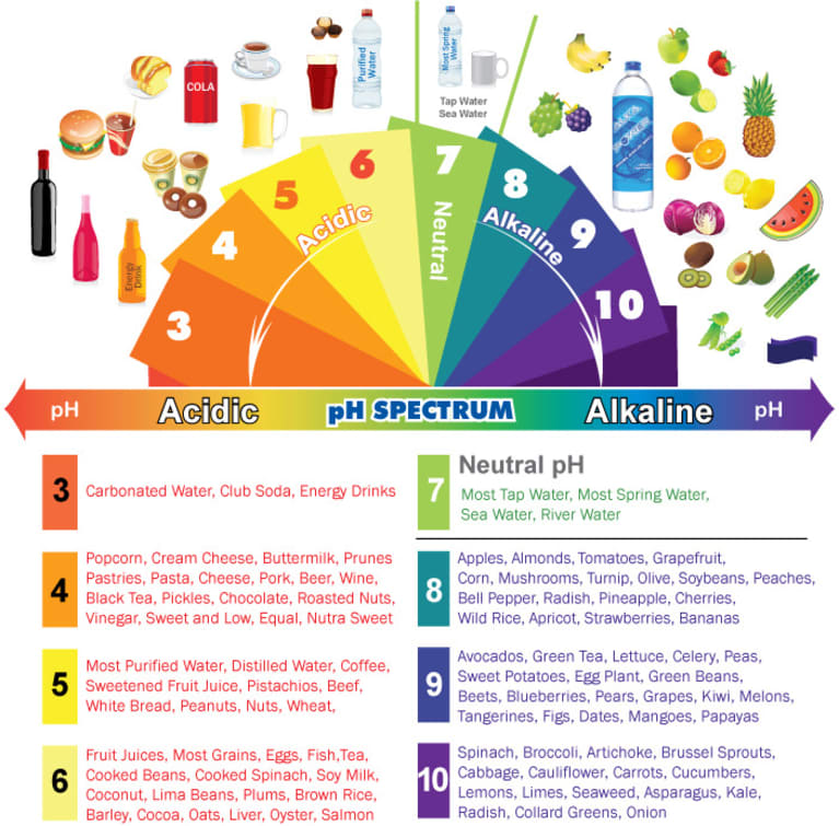 Alkaline & Acidic Foods Chart: Understanding The pH Spectrum