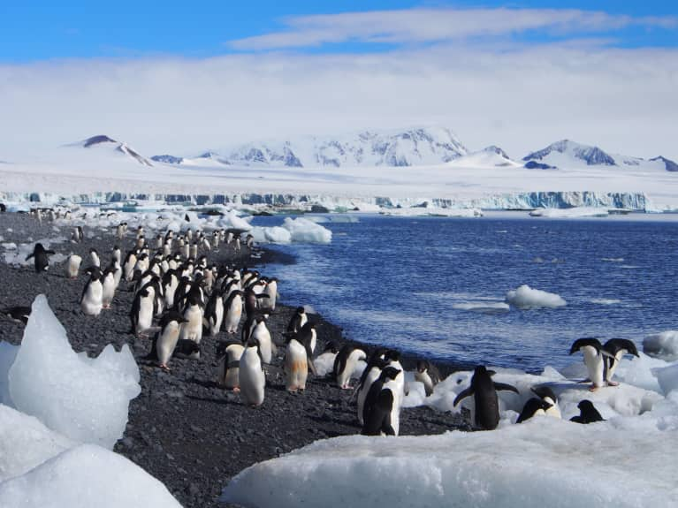 Meet The Largest Group Of Female Scientists Ever To Go To Antarctica