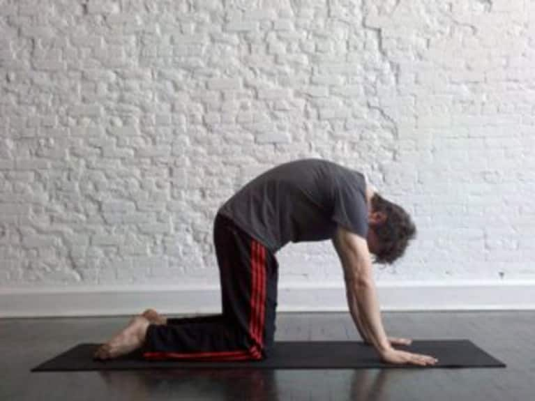 Cat Pose: How-to, Tips, Benefits