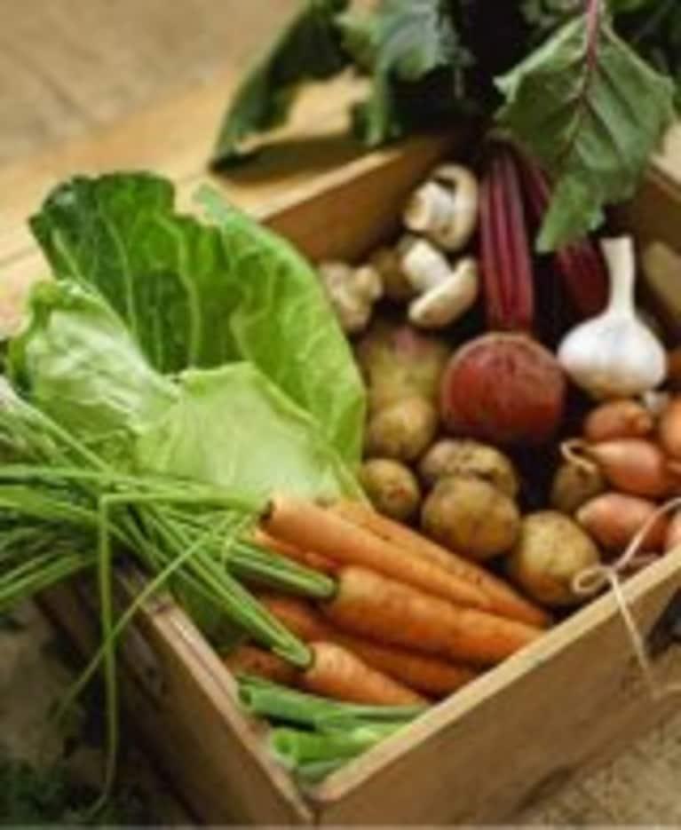 Corporate Wellness Program Prescribes Food