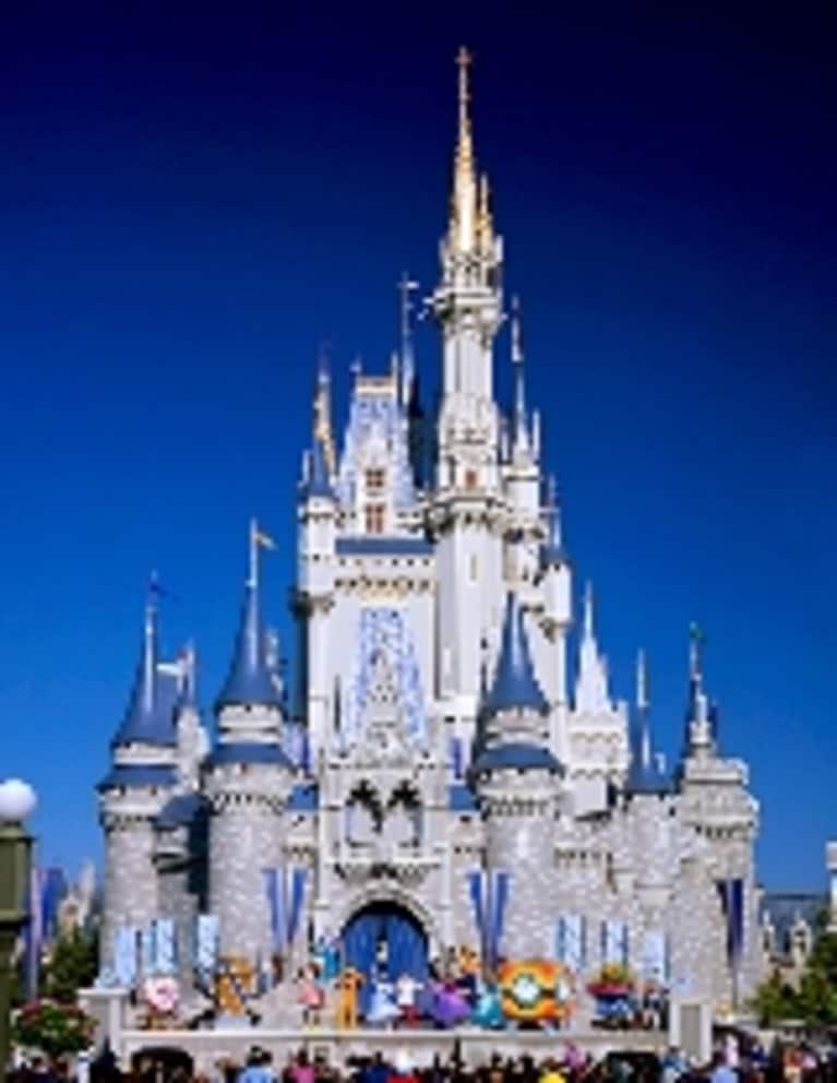 BabyCakes Vegan Bakery Opens at Disney World