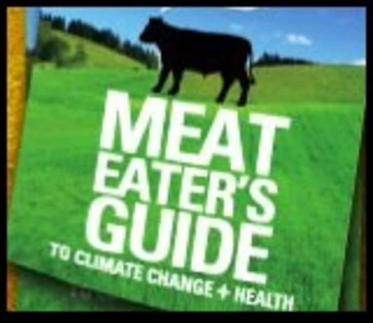 Meat Eater's Guide to Carbon (Infographic)
