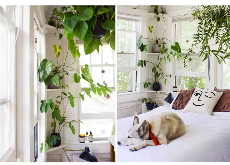 Calling All Plant Lovers: This Earthy Apartment In North Carolina Is #Goals