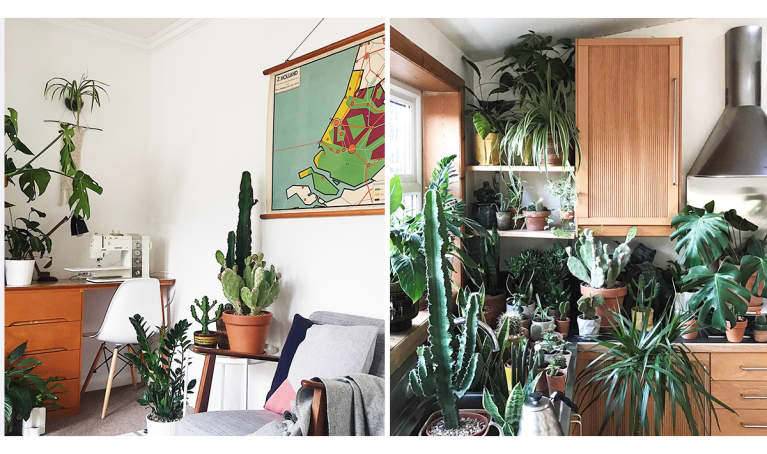 This Minimalist Home Is Any Plant-Lover's Dream. Let's Take A Tour
