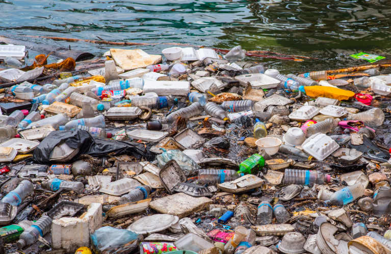 I've Spent My Life Studying Ocean Trash. Here's What I Wish More People Knew