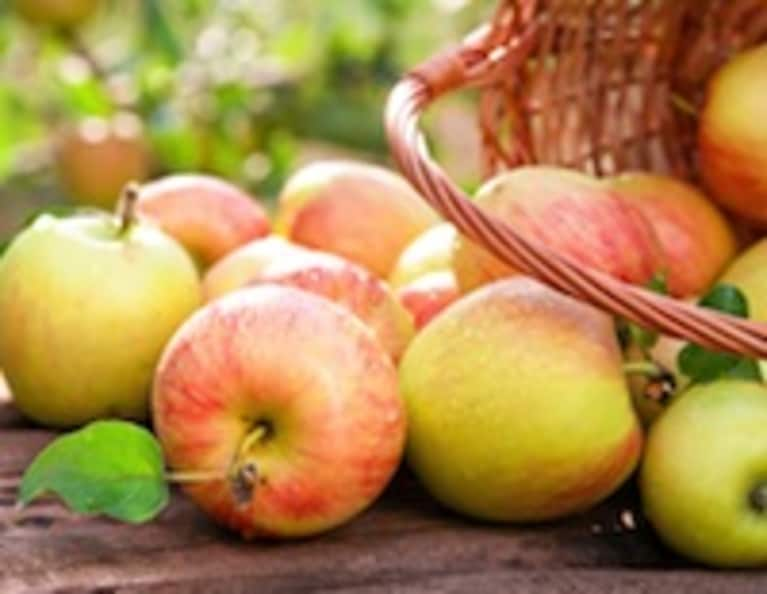5 Fall Foods to Increase Fertility