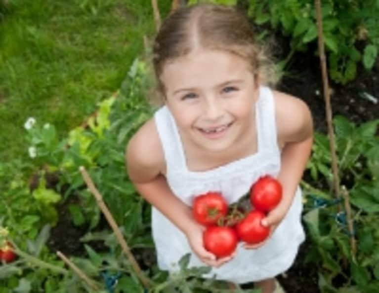 3 Steps to a GMO-Free Vegetable Garden