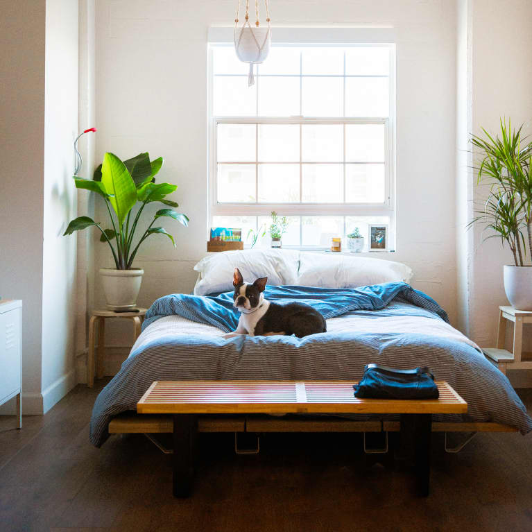 Your Definitive Guide To Buying A Nontoxic Mattress