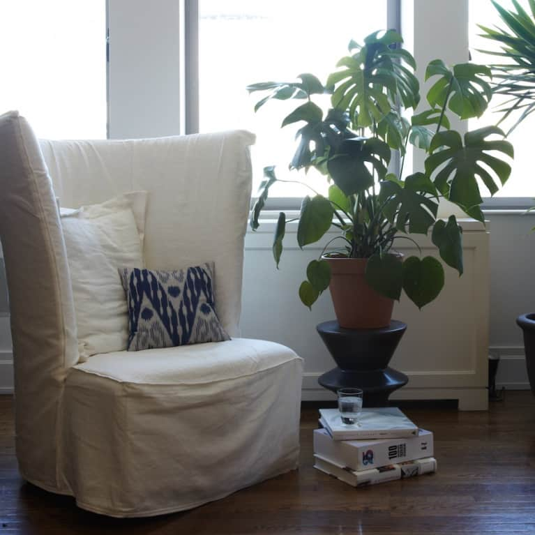 8 No-Fuss Houseplants To Add Some Zen To Your Space