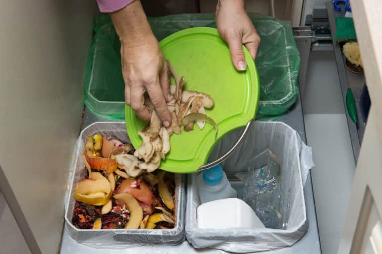 An Insider Look Into The Leading Food Waste Solutions