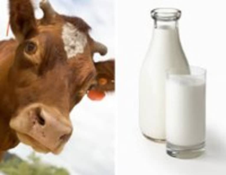 4 Facts That Will Make You Consider Raw Milk