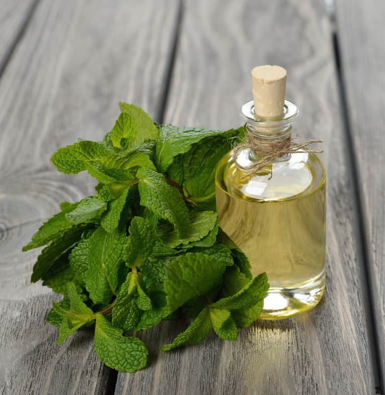 How To Use Aromatherapy To Bliss Out Your Home