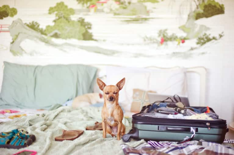 Going Away This Weekend? We've Got A 10-Minute Packing List For Ya