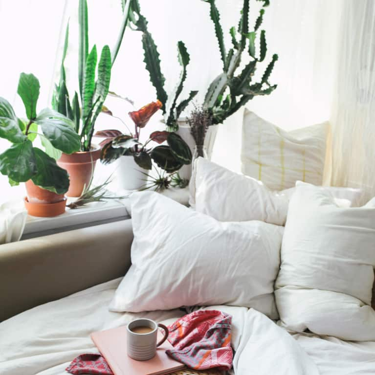 The One Room Where You Shouldn't Keep Tons Of Plants, According To Feng Shui