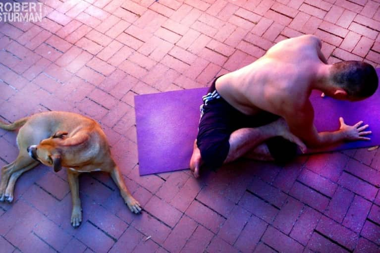 Yoga With Friends (Adorable Photos)