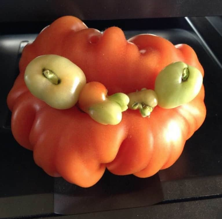 "These ""Ugly"" Fruits + Veggies Are Actually The Cutest Things We've Ever Seen"
