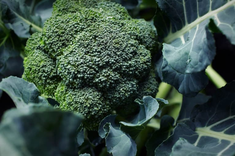 Scientists Discover A Cancer-Fighting Property In Cruciferous Veggies