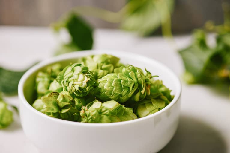 Could Hops Be A The Next Big Treatment For Metabolic Syndrome?