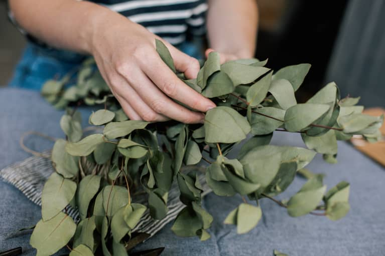 Need To Zen Out? Consider These Calming Eucalyptus Beauty Picks
