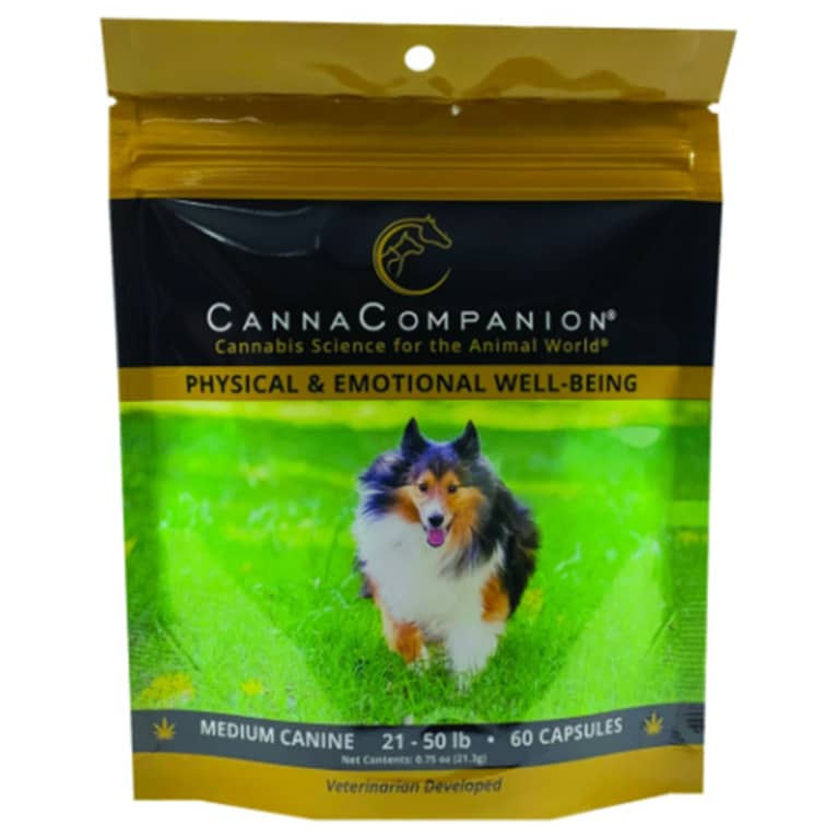 Canna Companion cbd for dogs in pouch