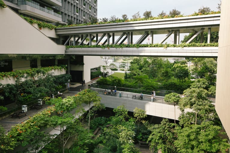 This Futuristic Hospital Is Using Greenery As Medicine
