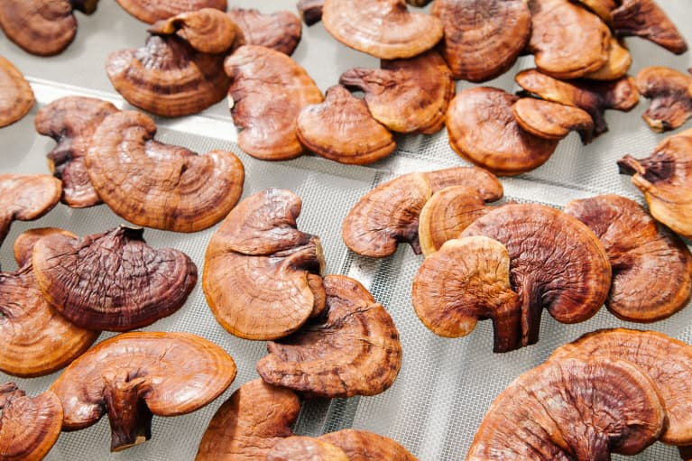 Reishi Mushrooms: 6 Awesome Health Benefits Of This Superfood