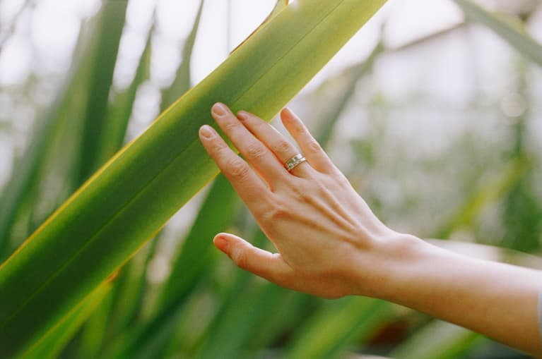 Woman's Hand Reaching Out to Touch a Leaf