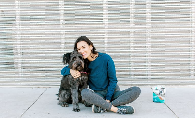 The 5 Nonnegotiables In My Dog's Wellness Routine