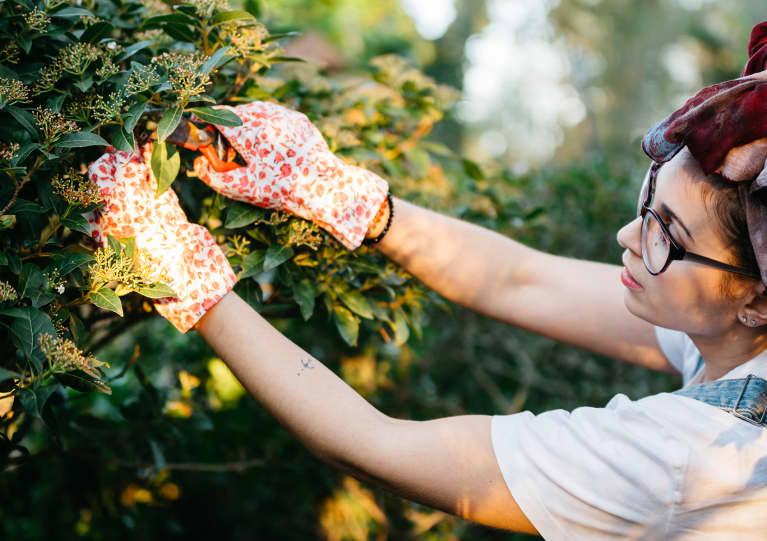 Prune Like A Pro In The Best Gardening Gloves Of Summer 2021
