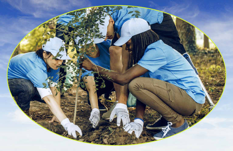 community tree planting initiative