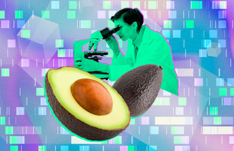 Scientists Just Sequenced The Avocado Genome — Will They Get Cheaper?