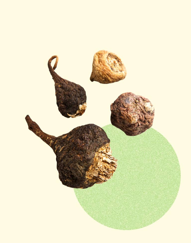 6 Healthy Superfoods You Didn't Know Originated In Latin America