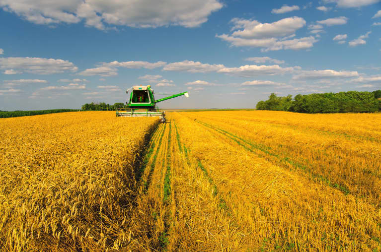 Big Corn & Soy Go On The Defensive As Cancer Experts Probe Weed Killers
