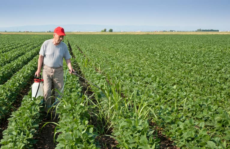 """""""Extreme Levels"""" Of Herbicide Roundup Found In Food"""