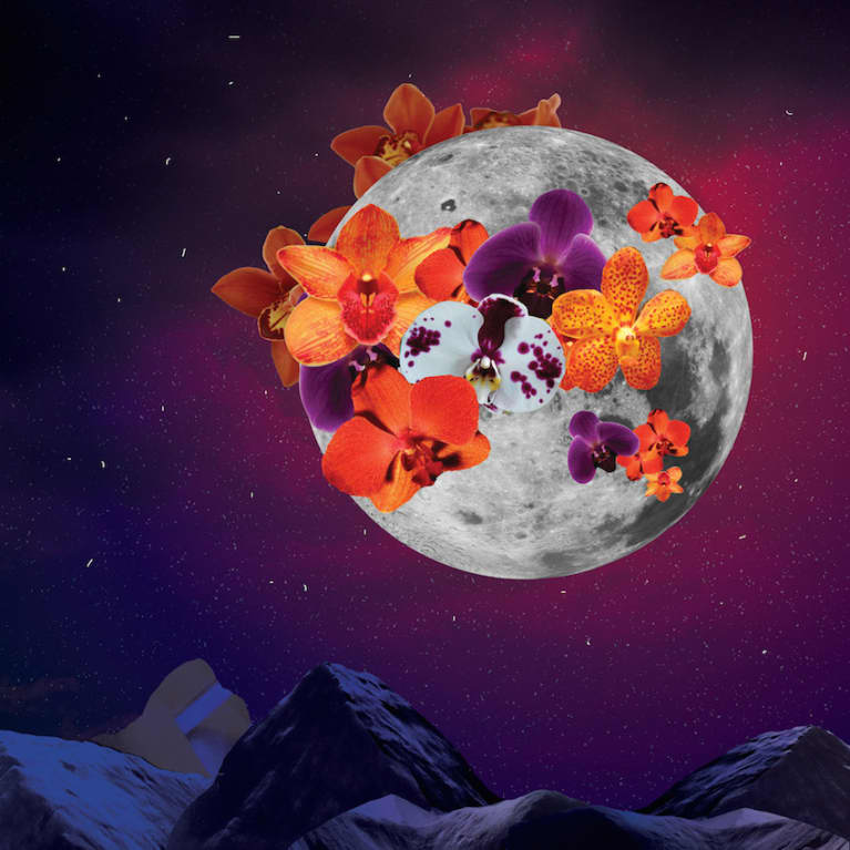 9 Ways To Harness The Sexual Energy Of Tonight's Full Moon