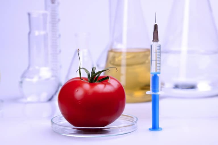 Are GMOs Killing You? What Agrobusiness Doesn't Want You To Know