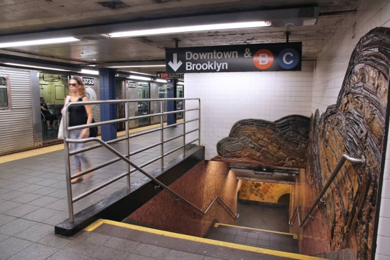 Find Out What Types Of Bacteria Live In Your Subway Station