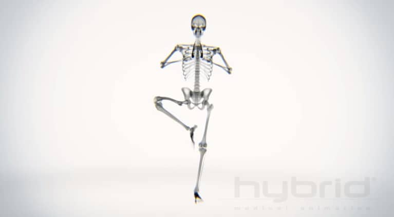 This Is What Your Skeleton Looks Like Doing Yoga (Video)